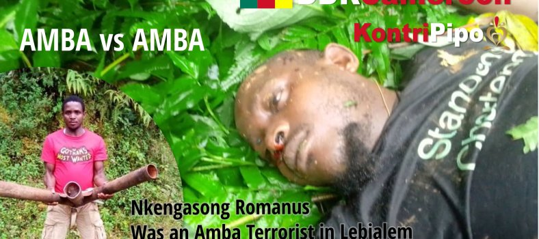 The notorious Ambazonia Terrorist called Nkengasong Romanus and his so-called body Guard have been Kumkumised by Ayeke, in Lebialem, 30 July 2020.