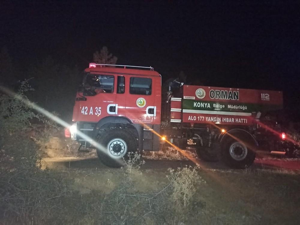 Seydişehir'de Kuğulu Parkta yangın paniği