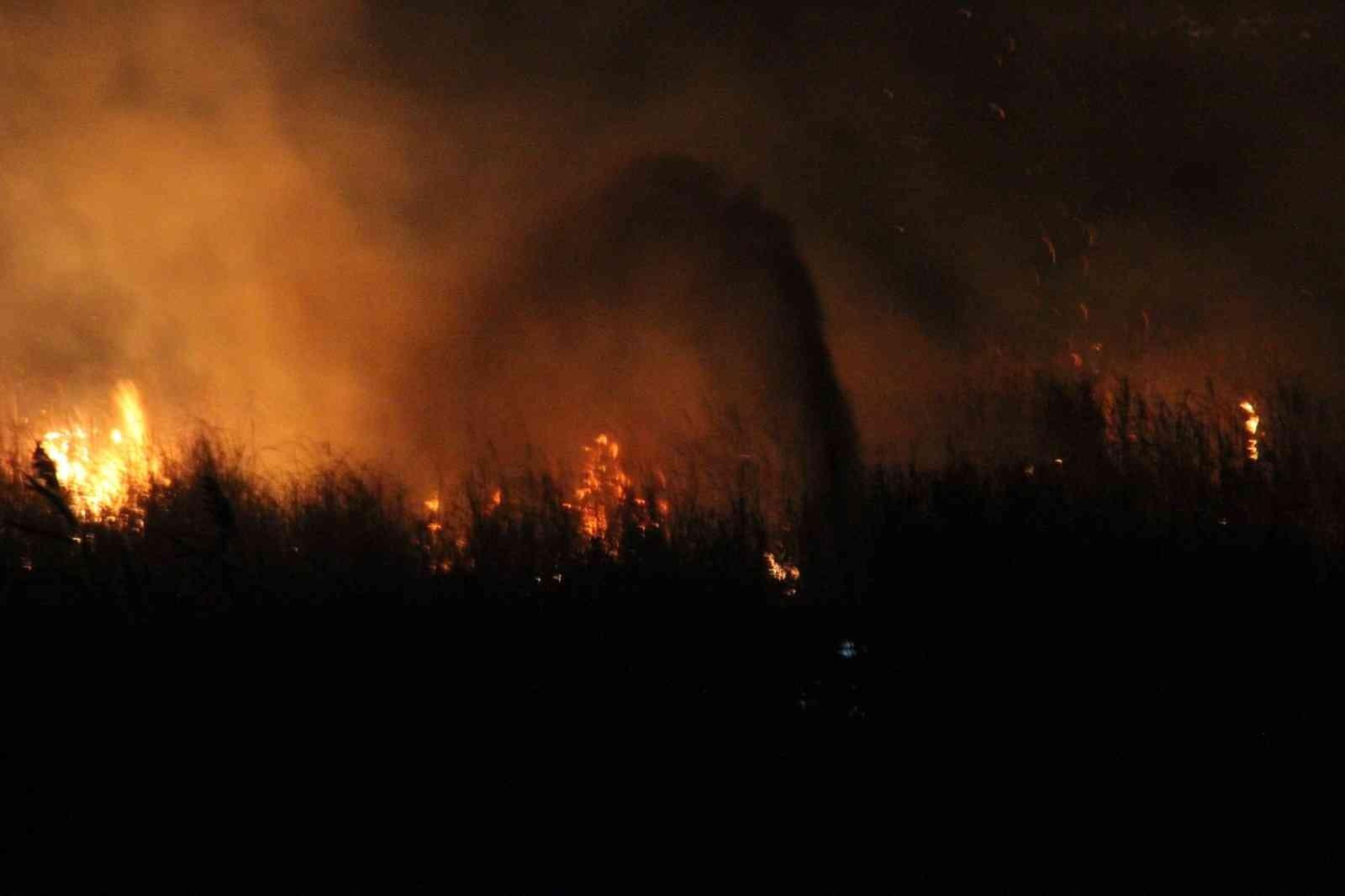 Beyşehir Gölü Milli Parkı'ndaki sazlık yangını kontrol altına alındı