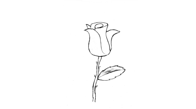 Rózsa_Könyv Guru