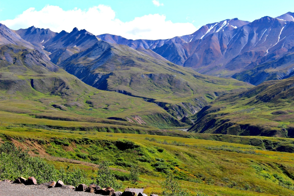 Denali National Park: tundra and mountains