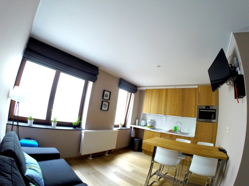 Airbnb Brussels: studio apartment kitchen-living area