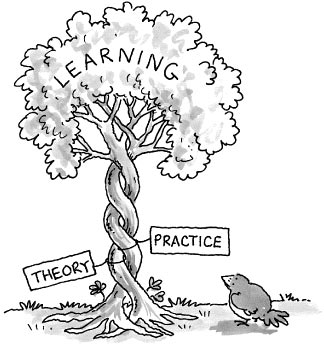 theory_practice_tree