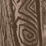 Dendroglyph