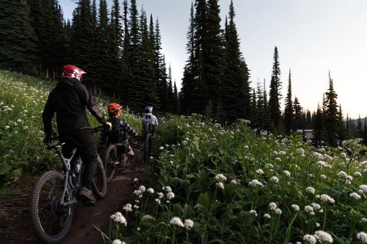 Adaptive Mountain Biking at Sun Peaks resort with Kootenay Adaptive during sunrise