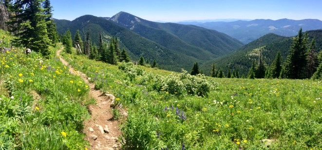 Along the Seven Summits Trail