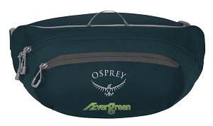 16134-Osprey-Daylite-Waist-Pack
