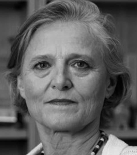 Ela Wiecko Volkmer de Castilho