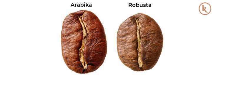perbedaan robusta dan arabika