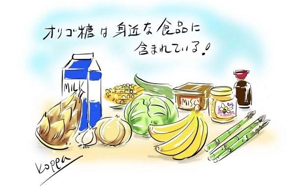 オリゴ糖を含む食品たち