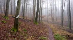 Jägersteig (Naturpark Westliche Wälder)