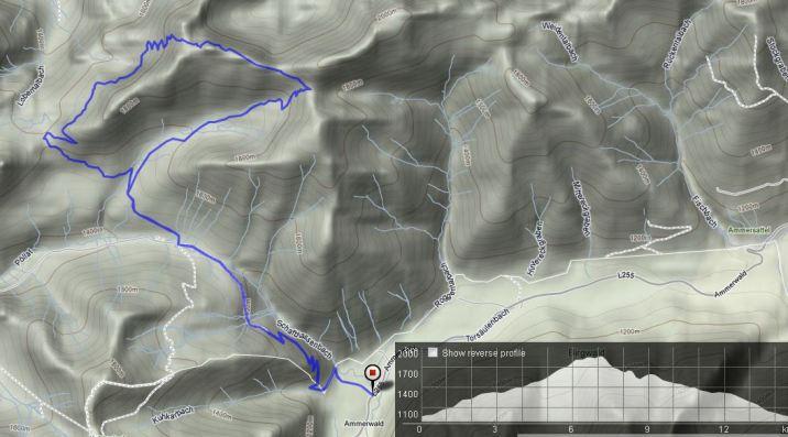 Berglauf auf die Krähe 15km | 1000Hm