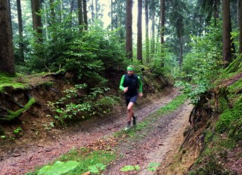 Anstieg im Bonholz