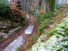 Hohlweg im Eurasburger Forst
