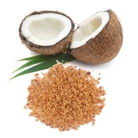 coconut_sugar_biosophy-500x500