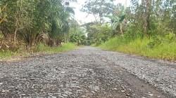 Jalan di Kota Marabahan ini perlu ditingkatkan lagi. (foto: faqih)