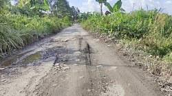 Jalan rusak di Desa Sawahan, Batola. (foto: faqih)