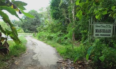 Jalan desa di Kabupaten Hulu Sungai Tengah, Kalsel ini sudah mulai rusak dan membutuhkan perbaikan. (foto: ramli)