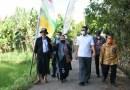 TPP PNS Pemrov akan Diberikan Beras Petani Lokal