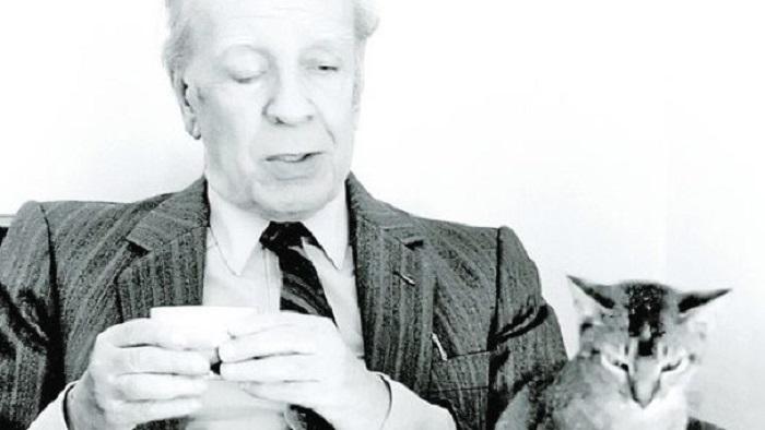 Borges-y-gato