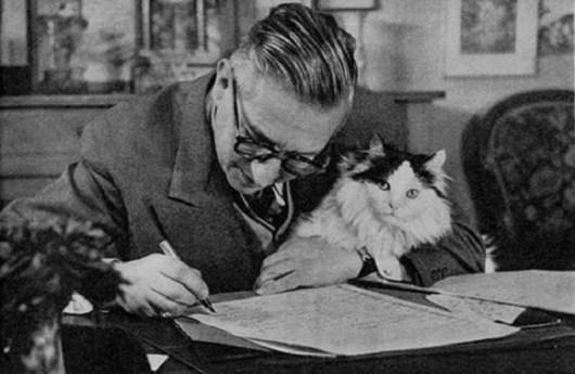 Escritores y gatos