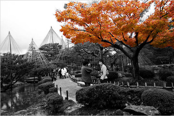 Kanazawa - Jardines Kenrokuen