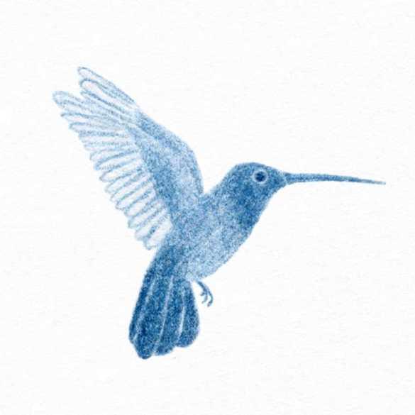 De Natura Florum - Clarice Lispector