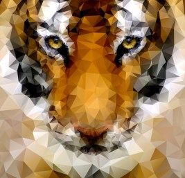 Tiger Symmetry: http://blog.spoongraphics.co.uk/wp-content/uploads/2014/low-poly/tiger-poly-lg.jpg