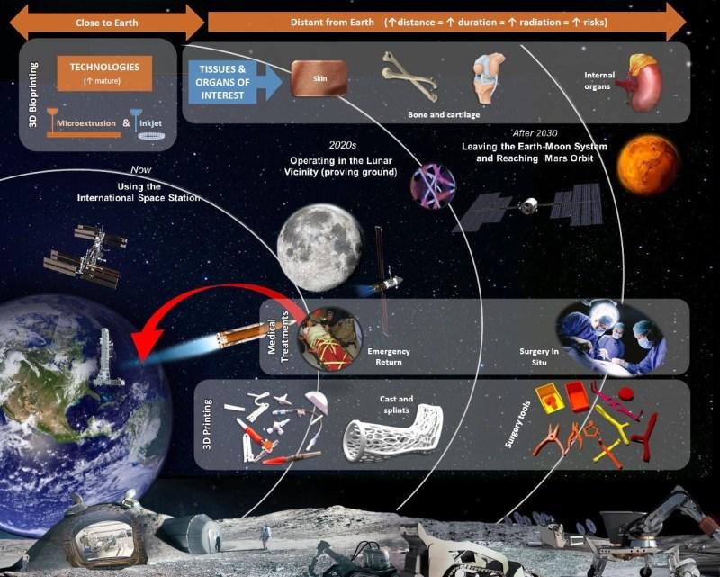 Bio-impression 3D dans l espace