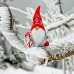 クリスマスに一人きりの女性必見!一人でも楽しめる過ごし方9選