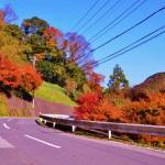 紅葉好き必見!関東のオススメ紅葉スポットランキングTOP10!