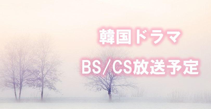 放送 韓 流 予定 ドラマ