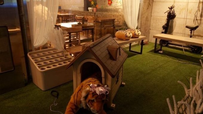 Tiger Kitchen
