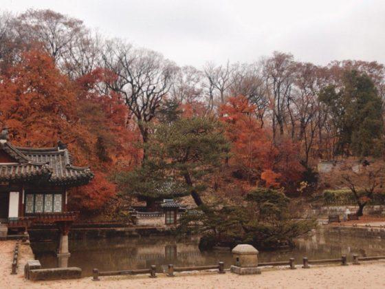 secret garden palace