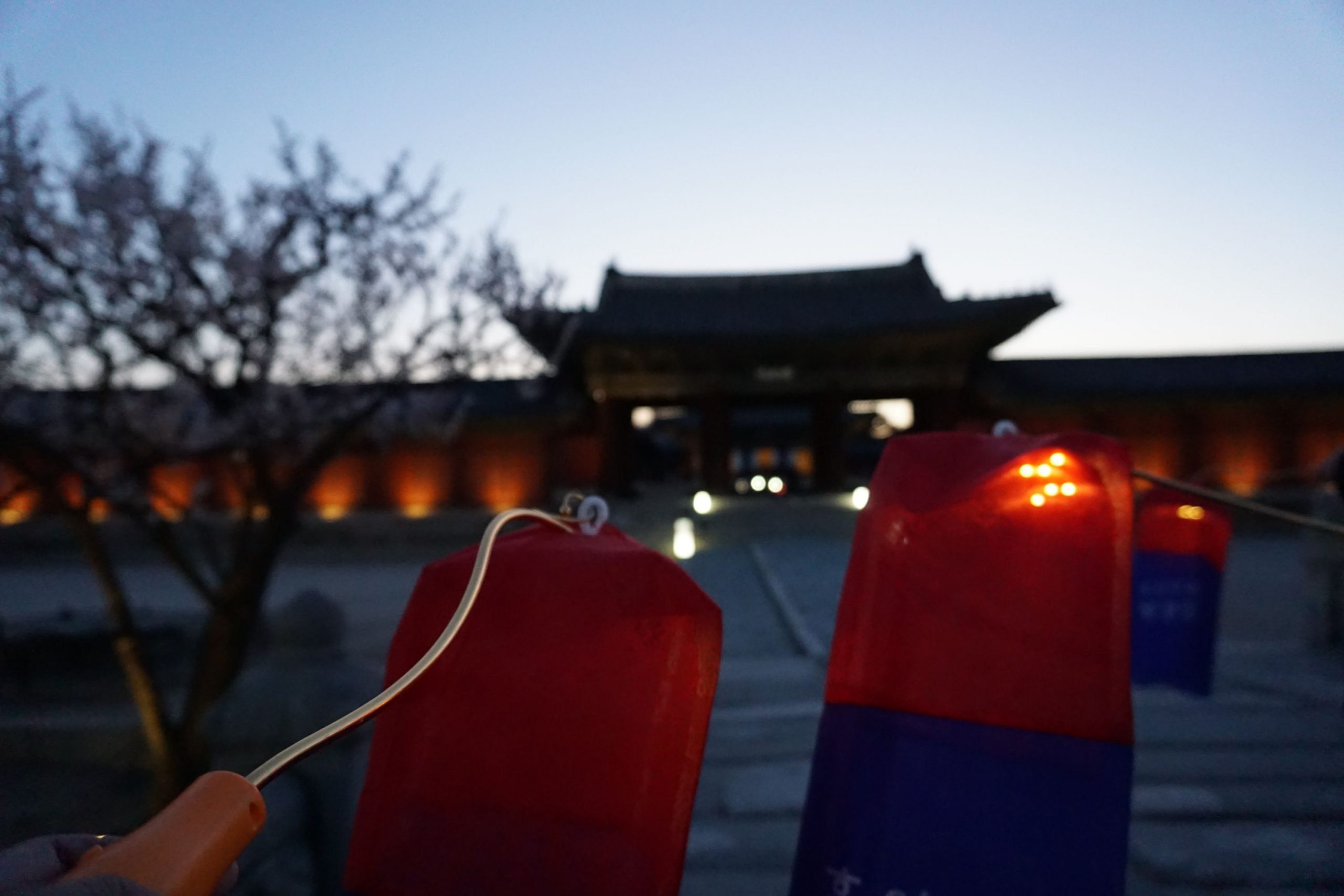 Changgyeonggung Palace – A Tour at Joseon's East Palace