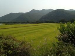 Korean countryside.