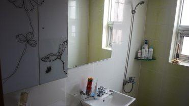 Le bathroom, part deux.