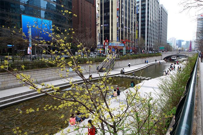 Representative attraction of Seoul, Cheonggyecheon Stream