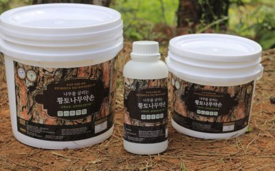 Natural Tree Wound Treatment