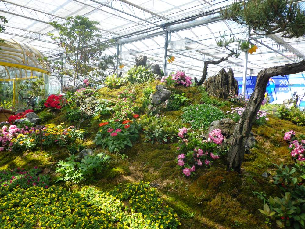Mt.Gangcheon Hiking and the Hampyeong Butterfly Festival (4/6)