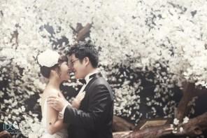 korean wedding photo_kg8559