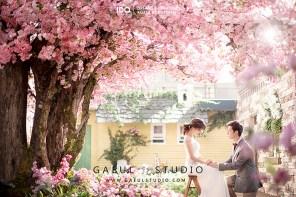 koreanpreweddingphotography_OGL028-2-1