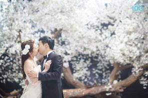 koreanweddingphotography_DSC00318