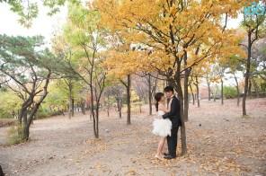 koreanweddingphotography_20141030_0166