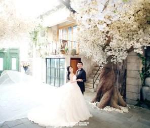 Koreanpreweddingphotography_Dennis & Joann7