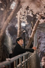 One Spring Night / Într-o Noapte de Primăvară