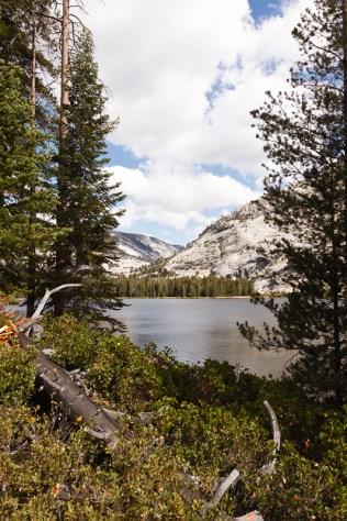 Yosemite_HighSierras-258