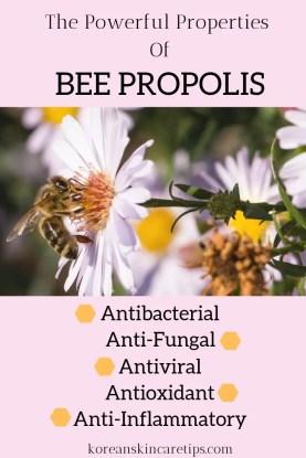 bee propolis benefits propolis korean skincare products ampoules what is propolis