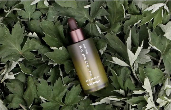 Tonymoly mugwort ampoule korean artemisia skincare products