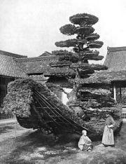 THE PINE-TREE JUNK AT KINKAKUJI In lotus-land Japan, 1910 by H.G.Ponting